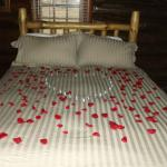 Comfy bed with optional rose petals and kisses
