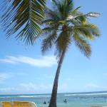 Playa Esmeralda Beach Resort의 사진