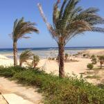 Foto van Three Corners Fayrouz Plaza Beach Resort