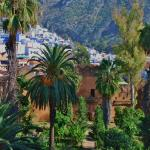 The Kasbah gardens