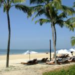 Park Hyatt Goa Resort and Spa resmi