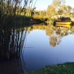 Moama on Murray Resort照片