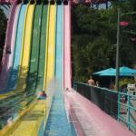 Photo of Aquatica