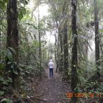 Villa Blanca Cloud Forest Hotel and Nature Reserveの写真