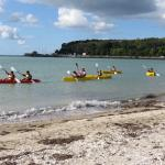 Fergs Kayaks Auckland - Day Tours