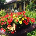 Summer at Bostwick House