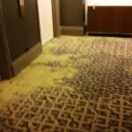 Carpets by elevators need some attention!