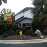 Photo of Super 8 Gainesville