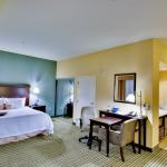 Hampton Inn & Suites Mt. Vernon/Belvoir-Alexandria South Area - Suite