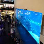 Photo de Dubai Mall