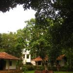 Bungalow and main house