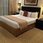Foto di Holiday Inn Dubai - Al Barsha
