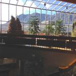 Pikes Peak from Lobby