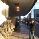 The Hotel Lion
