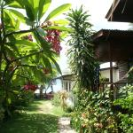 Foto di The Boardroom Beach Bungalows