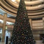 Nice christmas tree in the lobby
