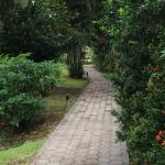 Path to the restaurant