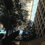 Foto di Hyatt Regency San Francisco Airport - Burlingame