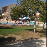 Olive Grove Trees Apartments resmi