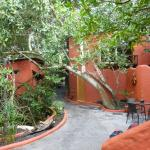 Photo of Red Mangrove Aventura Lodge