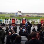 Punters Peruse the Odds