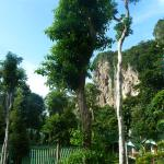 Foto van Krabi Mountain View Resort