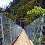 one of several suspension bridges