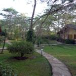 Photo de Arumeru River Lodge