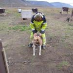 Photo of Green Dog Svalbard Day Tours