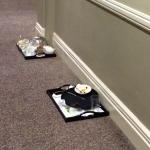 OLD BREAKFAST TRAYS STILL LEFT IN CORRIDORS AT 5:30PM