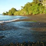 Foto de Playa Nicuesa Rainforest Lodge