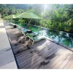 the cozy pool with coconut tree view around