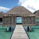 ภาพถ่ายของ Four Seasons Resort Maldives at Landaa Giraavaru