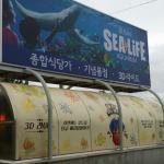 Busan aquarium is just behind the hotel