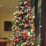 Elan Hotel Christmas Tree