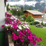 Photo de Hotel Restaurant Alpina Grindelwald