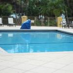 Foto de Hampton Inn Key Largo