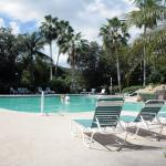 Pelican Cove Pool