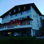 Photo de Hotel Alpina Nature and Wellness