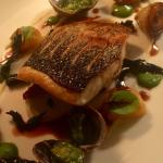 Main course of sea bass ��