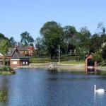 Lovely lakes with swans and ducks