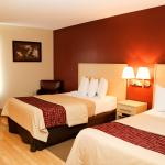 Foto de Red Roof Inn London I-75