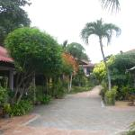 Photo of P&P Samui Resort