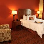 Hampton Inn & Suites Bastropの写真