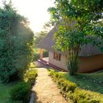 Chimpanzee Forest Guesthouse의 사진