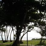 Photo de Magdalena Grand Beach & Golf Resort