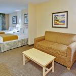 Holiday Inn Express Hotel & Suites - Daphne-Spanish Fortの写真