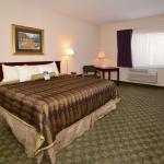 BEST WESTERN Big Spring Lodge