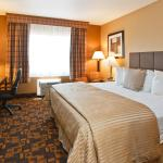 Foto di BEST WESTERN PLUS Denver Hotel