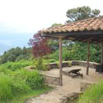 Foto de Virunga Lodge